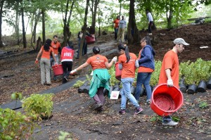 Community Volunteer Day @ Riverside Park (various locations)