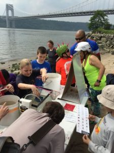 New York City Fish Count @ Fort Washington Park @172nd Street Beach | New York | New York | United States