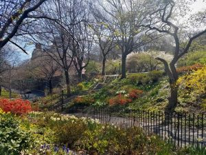 Riverside Park Horticulture Tour @ New York | New York | United States