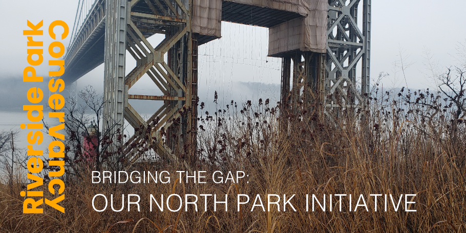 Our North Park Initiative